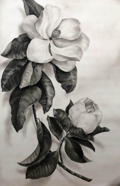 Magnolia With Bud