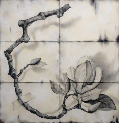 Large Magnolia Branch